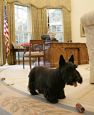 Barney_oval_office